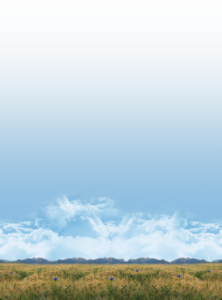117-1177755_tall-background-by-blue-sky-background-png