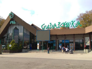 gubaluwka-600x450-2